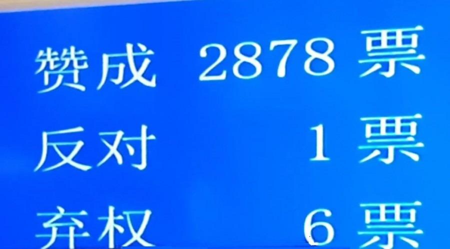 人大通過訂港區國安法決定 2878票贊成1票反對6棄權